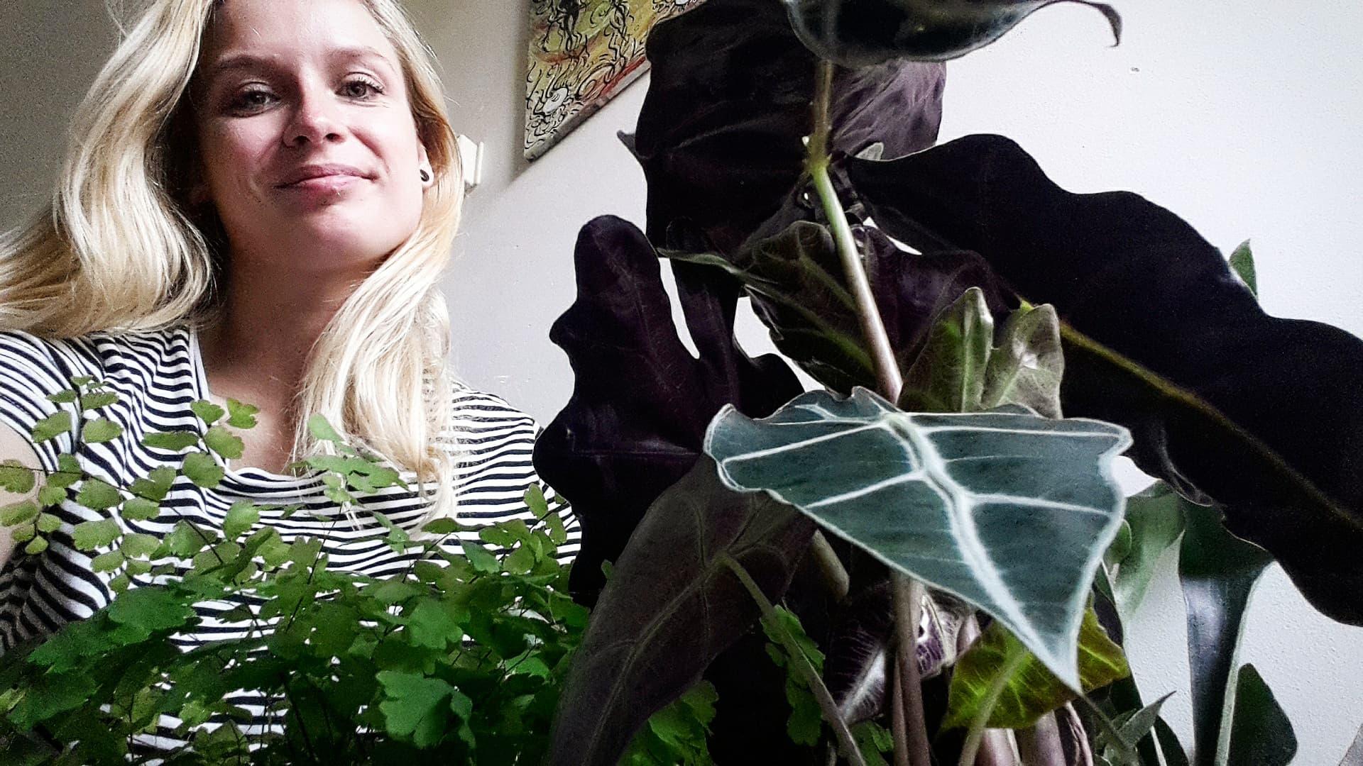 The Gardener without a Garden